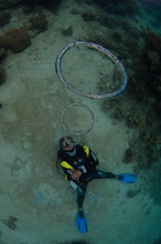 HAL070610A0009  Diver blowing bubble rings, Kayasa, Halmahera, Maluku Islands, Indonesia