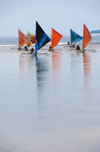 HAL110610A0030  Traditional sailing boats, colourful group in shallows, Halmahera, Maluku Islands, Indonesia